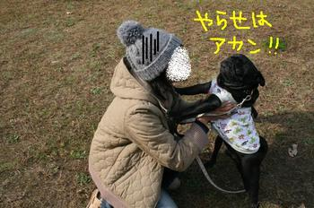 Photo_8