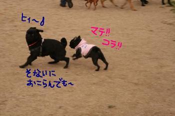 Photo_296
