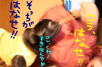 Photo_400