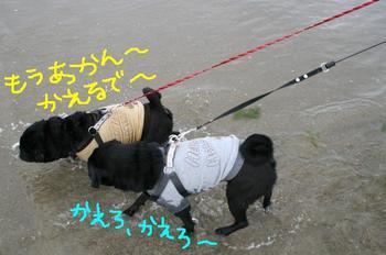 Photo_409
