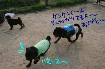 Photo_482