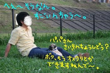 Photo_495