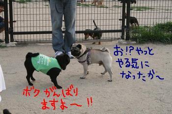 Photo_497