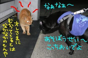 Photo_526