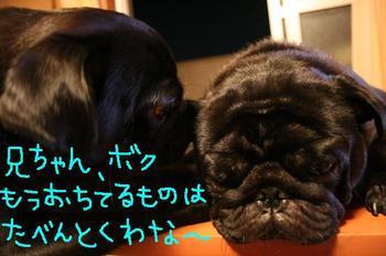 Photo_539