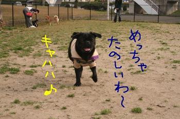 Photo_82
